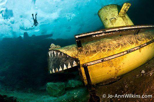 Diving Under the Ice| Morrisson Quarry in Wakefield, Quebec, Canada. © Jo-Ann Wilkins