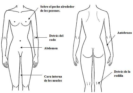 Menopausia y la CREMA DE CAMOTE SILVESTRE