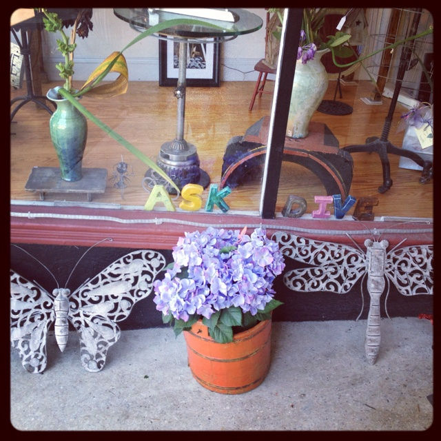 Butterfly And Dragonfly Outdoor Decor At Diving Cat Studio Gallery In Phoenixville PA Divingcatstudio
