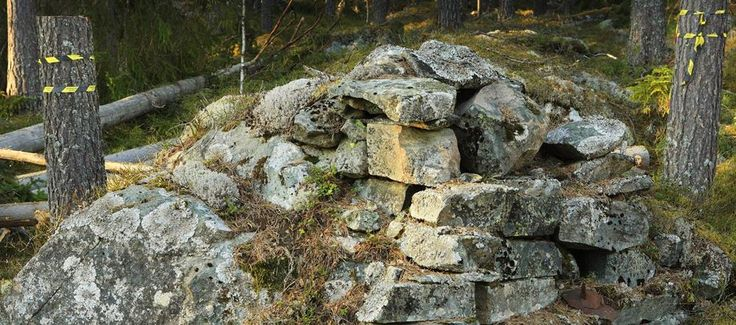 This pile of stone has more to it than meets the eye. The forests managed by Stora Enso in Sweden are rich in historical remains and people have been living in these areas for thousands of years. That puts special demands on how to plan in the field as well as how to use forest machines.