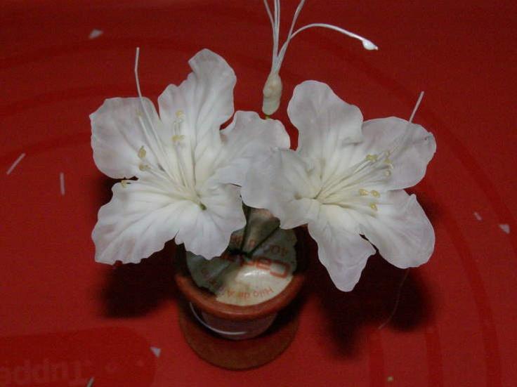 Frias flores de porcelana: fazer uma flor sem cortador por Carmen Tyrer