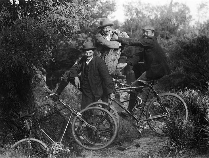 Early Aussie mountain-bikers? Cyclists having fun on a bush track near Taggerty in Victoria. Photo was taken at Easter in 1905 by Mark James Daniel (1867-1949). Glass negative. Image courtesy of the State Library of Victoria.