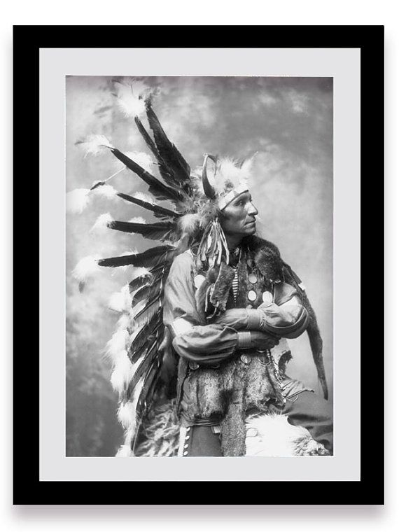 Native American Portrait, Sioux Tribe, American Indian, Indigenous Americans, History, Historical Print, American History, Tribal