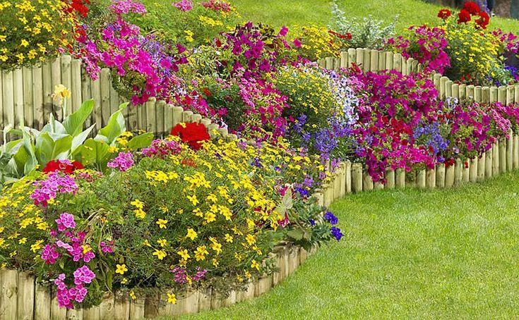 Idei pentru grădina ta de flori