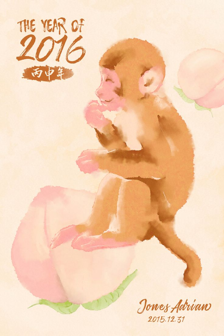 The Year Of Monkey  2016  Chinese New Year