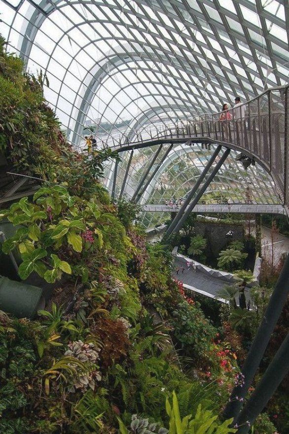 The Cloud Forest Walking Bridge At The Gardens By The Bay Singapore Gardens By The Bay Green Architecture Singapore Garden