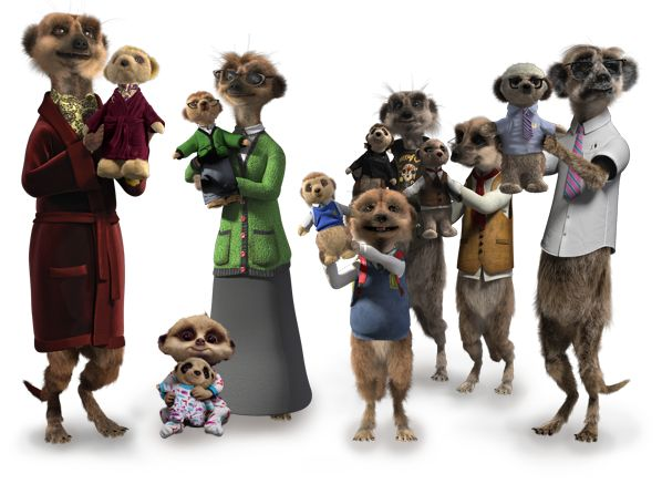 compare the meerkat - Google Search