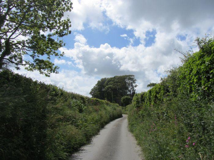 the green wall walk