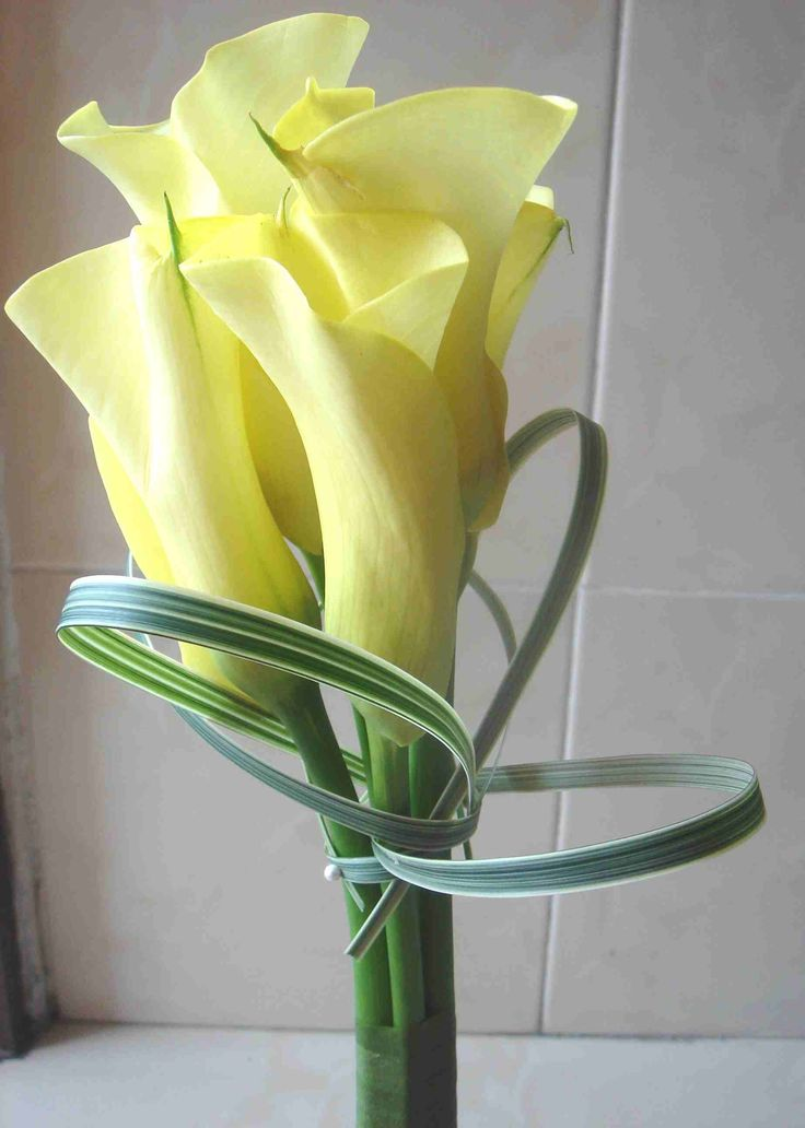 17 best images about calla lilies on pinterest cupcake vase and calla lily bouquet. Black Bedroom Furniture Sets. Home Design Ideas