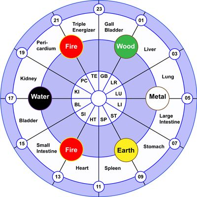 Meridian Clock - Meridian Flow Wheel ~ Take meds and supplements when energy is in the corresponding organ system