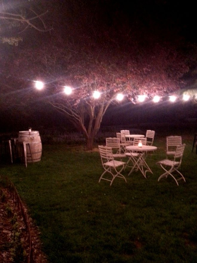 The courtyard looks amazing lit up by festoon lights!