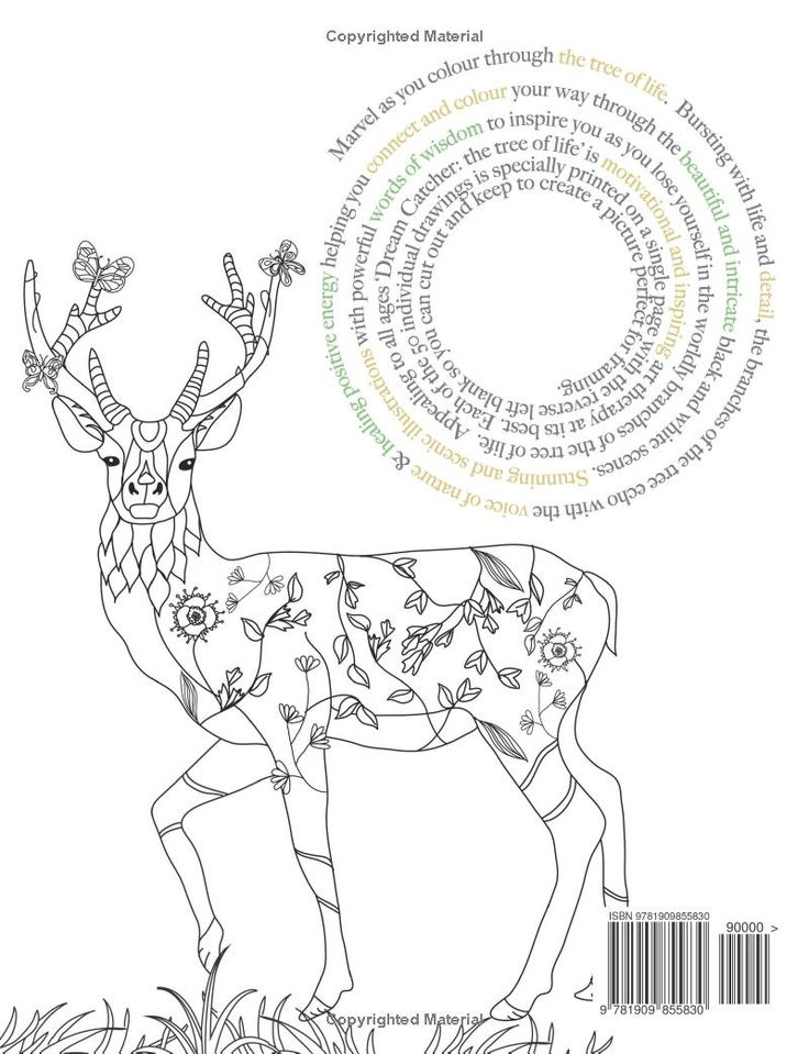 Dream Catcher The Tree Of Life Coloring Book