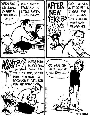 I imagine that I will take all my parenting cues from Calvin and Hobbes My parents totally did this to my sister and I. It really did build character :)
