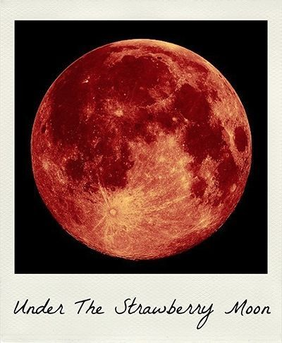 Strawberry Moon | June | Full Moon