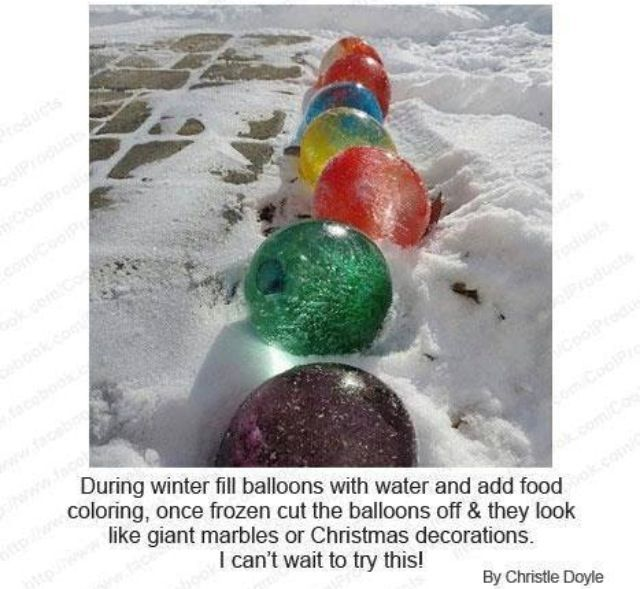 Unique Frozen Water Balloons Ideas On Pinterest Color Water - They gave this tiny dog some water balloons what happens next is hilarious