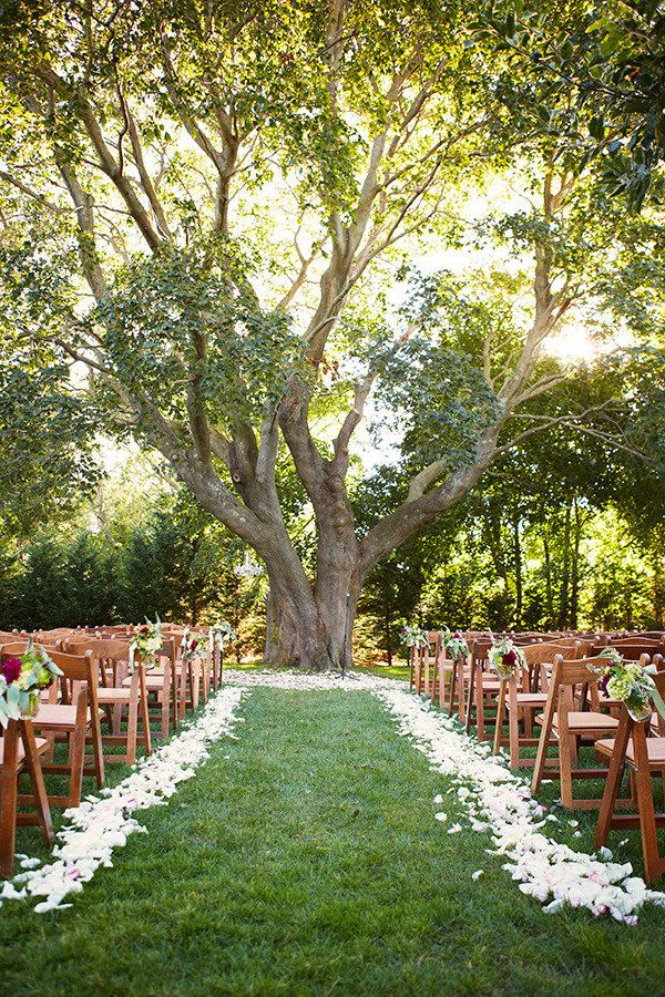 love the tree as the centerpiece   Photography By / http://alexandrameseke.com,Floral Design By / http://klenahandesigns.com