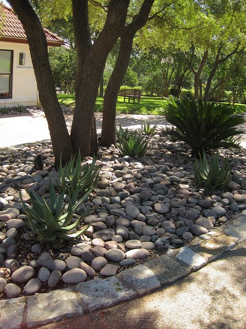Simple xeriscaping idea for under shady trees xeriscape for Tree landscaping ideas