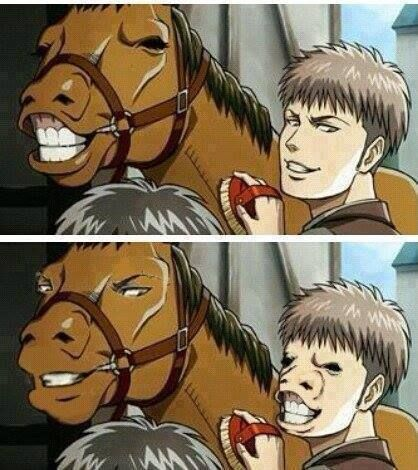 I don't get it, both are  pictures of two horses wtf