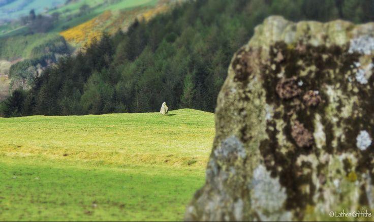 Standing stones 600m NE of Cwmdarren / Trefeurig.
