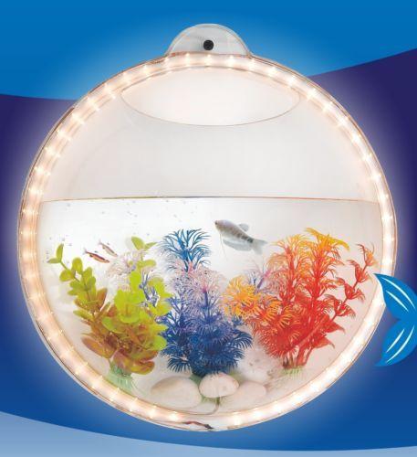 Led light wall hanging mount beta fish bubble aquarium for Wall mount fish bowl