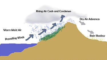 """Rain Shadow-- is a dry area on the lee side of a mountainous area (away from the wind). The mountains block the passage of rain-producing weather systems and cast a """"shadow"""" of dryness behind them."""