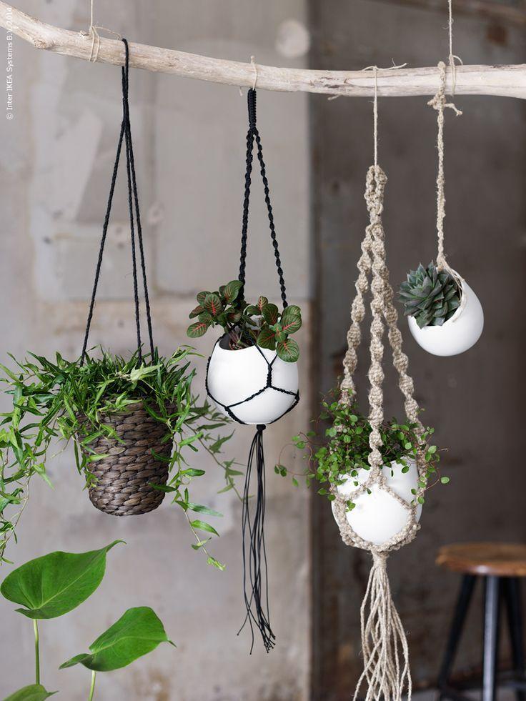 Idée suspensions en macramé pour les plantes vertes en décoration - Roselia garden