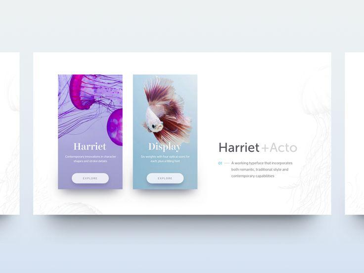 Serif Combos by Marina Matijaca #Design Popular #Dribbble #shots