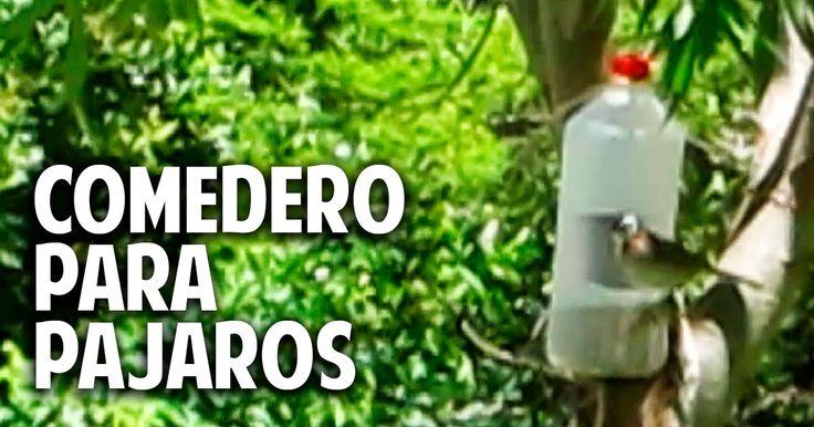 Cosas del Jardin: Comedero para aves silvestres en 2 minutos - recontra facilisimo
