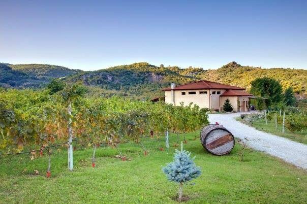 Karanatsios Winery, Marina   Naoussa