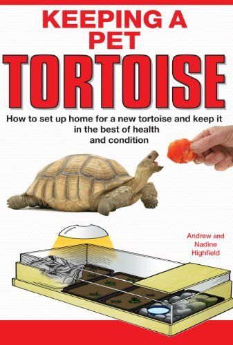 ... Pet tortoise on Pinterest Tortoise house, Locking hinge and Turtles