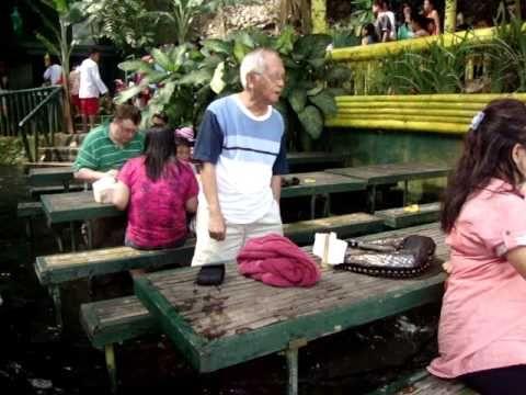 Exclusive Cascading Cafeterias - The Villa Escudero Waterfalls Restaurant is a Refreshing Retreat