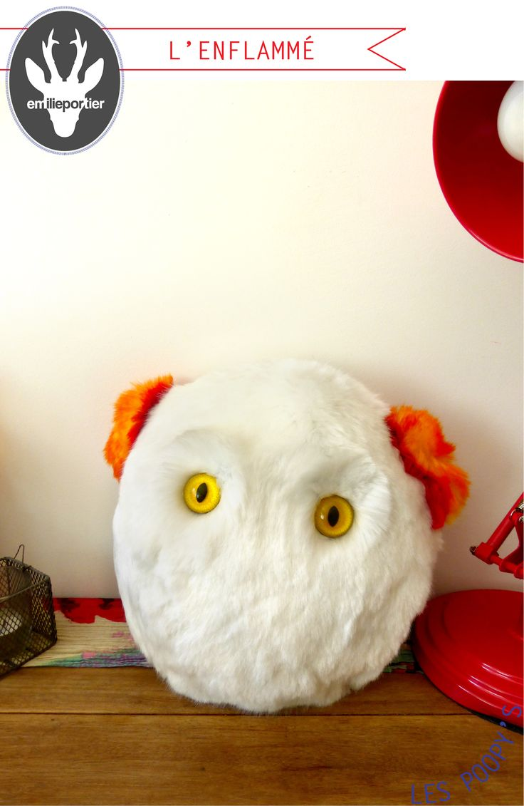 ***  Big Poopy's l'Enflammé  ***  être intriguant, au regard vif et lumineux. Son caractère chaleureux et sa fourrure exceptionnellement douce donnent particulièrement envie de le serrer dans les bras !  :)