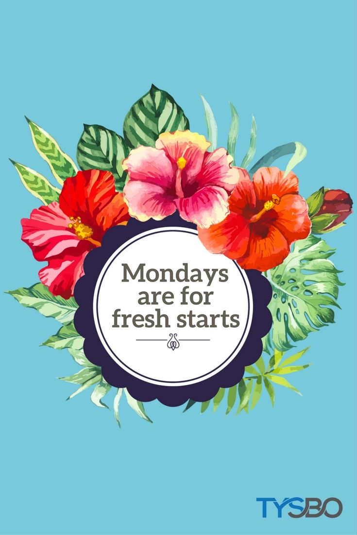 Great Vibes Monday! Start something new for your business on a Monday! Visit our website for business cost saving solutions and more. (scheduled via http://www.tailwindapp.com?utm_source=pinterest&utm_medium=twpin)