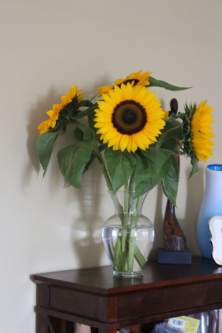 Just a few sunflowers in a vase can brighten a room.