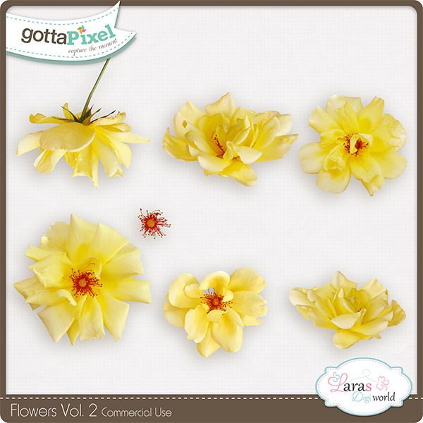 Flowers Vol. 2 :: Gotta Pixel Digital Scrapbook Store