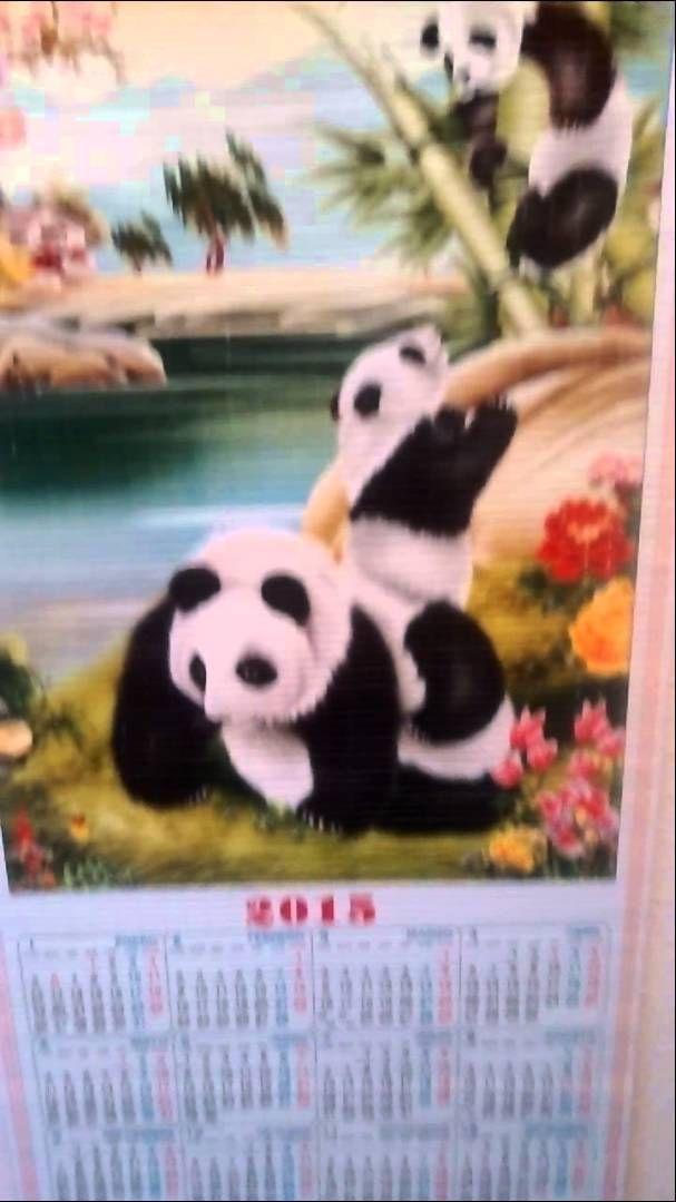 Año chino de 2015: año del Oso Panda. Foto de Riselo.