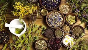 Herbal shop for natural herbal remedies for men & women. Mens Clinic & Womens clinic for herbal medicine Herbal shop http://www.herbalshopafrica.com