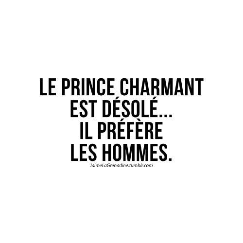 Le prince charmant est désolé... Il préfère les hommes - #JaimeLaGrenadine #princecharmant