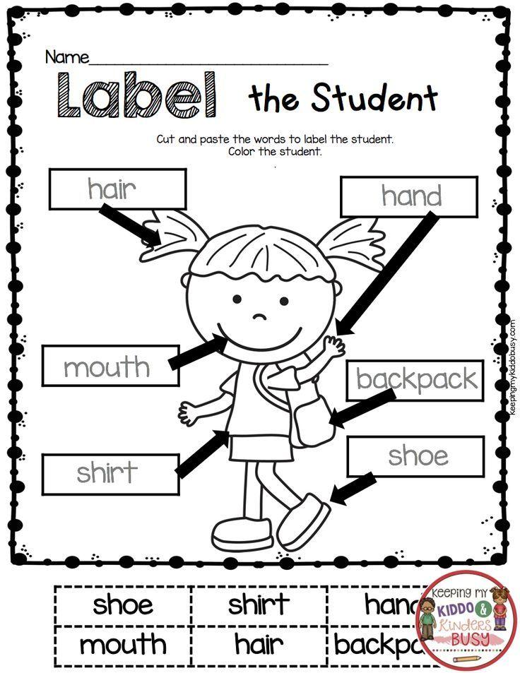 Kindergarten In August Freebies Keeping My Kiddo Busy Back To School Worksheets School Worksheets Kindergarten Worksheets Free kindergarten labeling worksheets