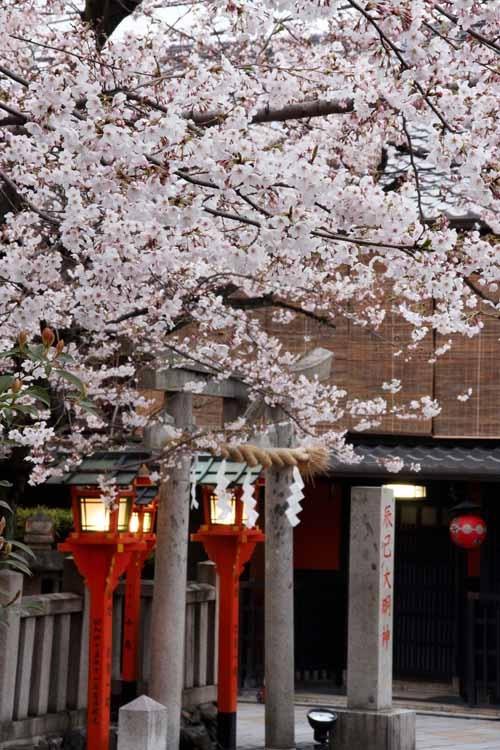 Gion Shinbashi  #Kyoto#Japan  Photography Kinichi Maeda