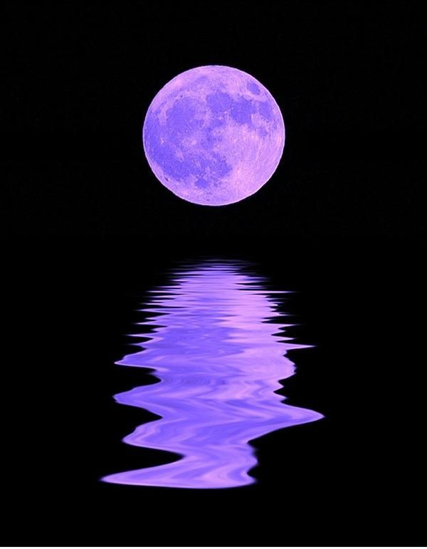purple things | Pretty | Purple things
