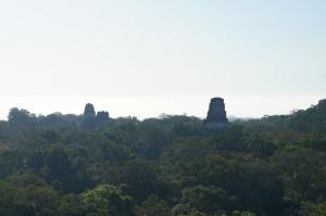 2012年12月21日人類滅亡説!? マヤ文明の遺跡、ティカル遺跡 ~グアテマラ~ ttikal9