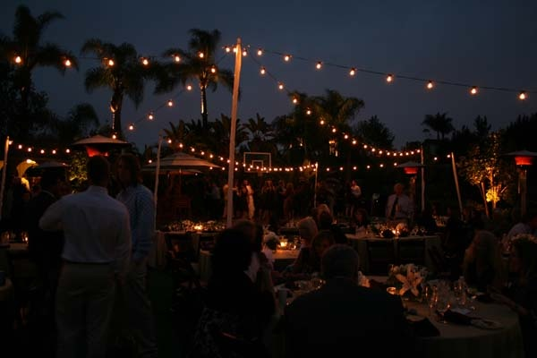 1000 Images About Event Lighting On Pinterest Trees Primary Sources And H