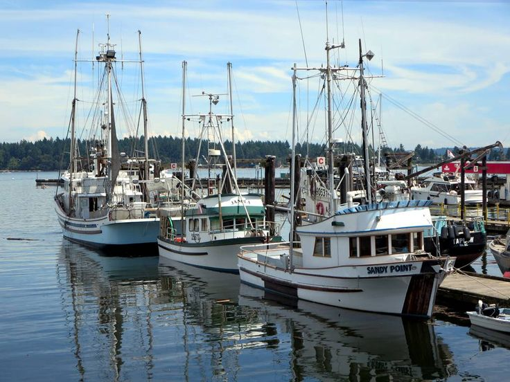 The local fishing fleet tied up at Nanaimo, British Columbia, Canada.