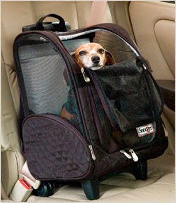 Wheel Around Dog Carrier. These soft-sided pet carriers are airline approved for on-board travel. Great for around town, too. We stock these for immediate delivery.