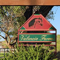 Horseback riding lessons and camps in Corrales