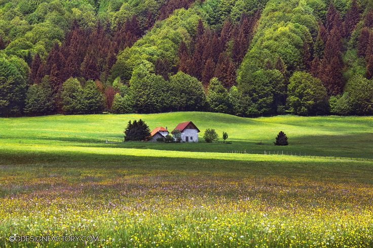 Alone in the spring by Virginio Perissinotto on 500px