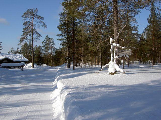 Lapiosalmi Wilderness Center is open all year round!
