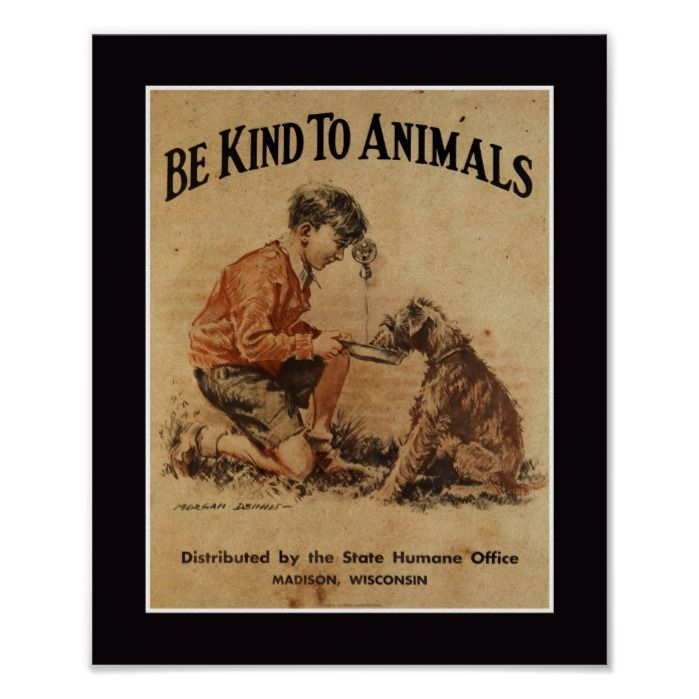 BE KIND TO ANIMALS VINTAGE Retro Poster Art Print A4 SIZE Glossy Gift