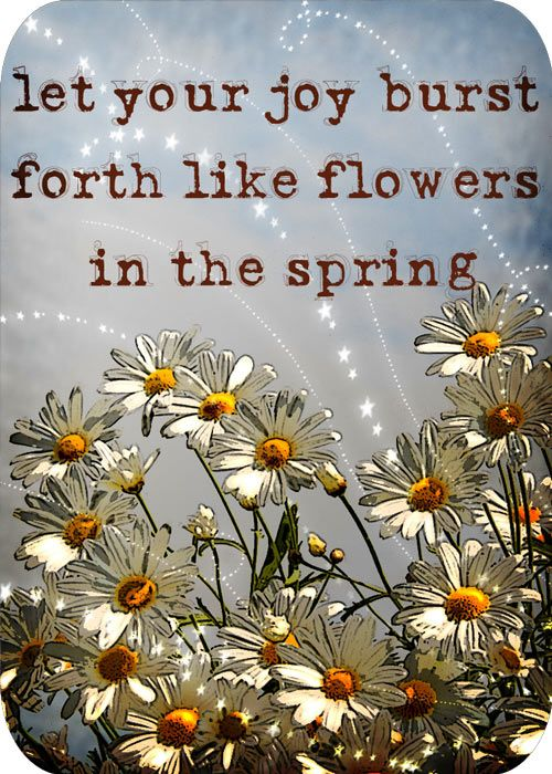 Let your joy burst forth like flowers in the spring.